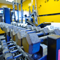 Free Weights, Customized Training Program, Conshohocken, PA